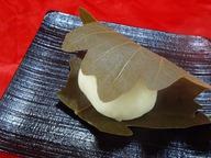 かしわ餅(こしあん)